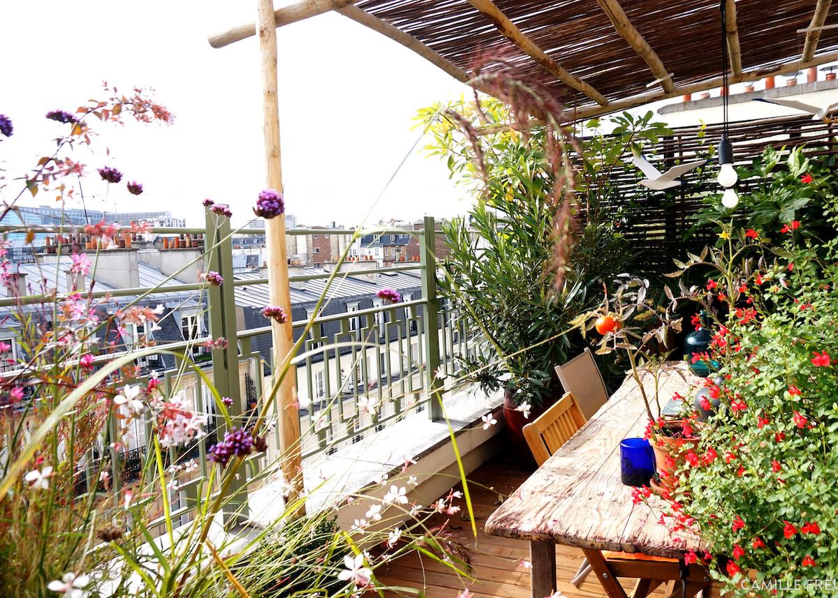plantes balcon exposition sud paris original fleurs - blog déco - clem around the corner