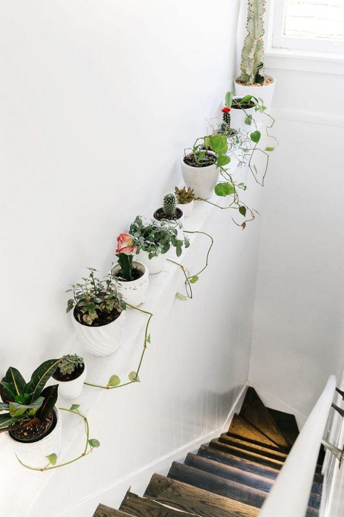 escaliers originaux plantes décoration cage d'escalier avec plantes vertes escaliers peint en blanc marches en bois rustique blog déco clem around the corner