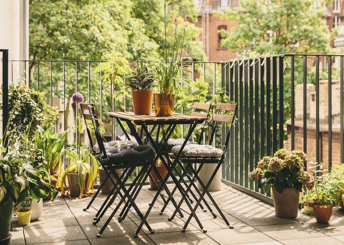 Petites Plantes Fleuries En Pot plante balcon ouest : 10 astuces pour l'embellir - clem