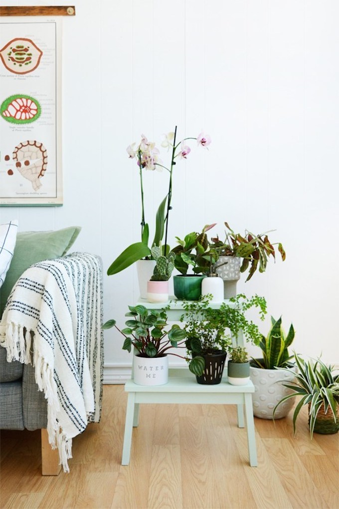 marche pied ikea tabouret plante vert menthe style urban jungle - blog déco - clem around the corner