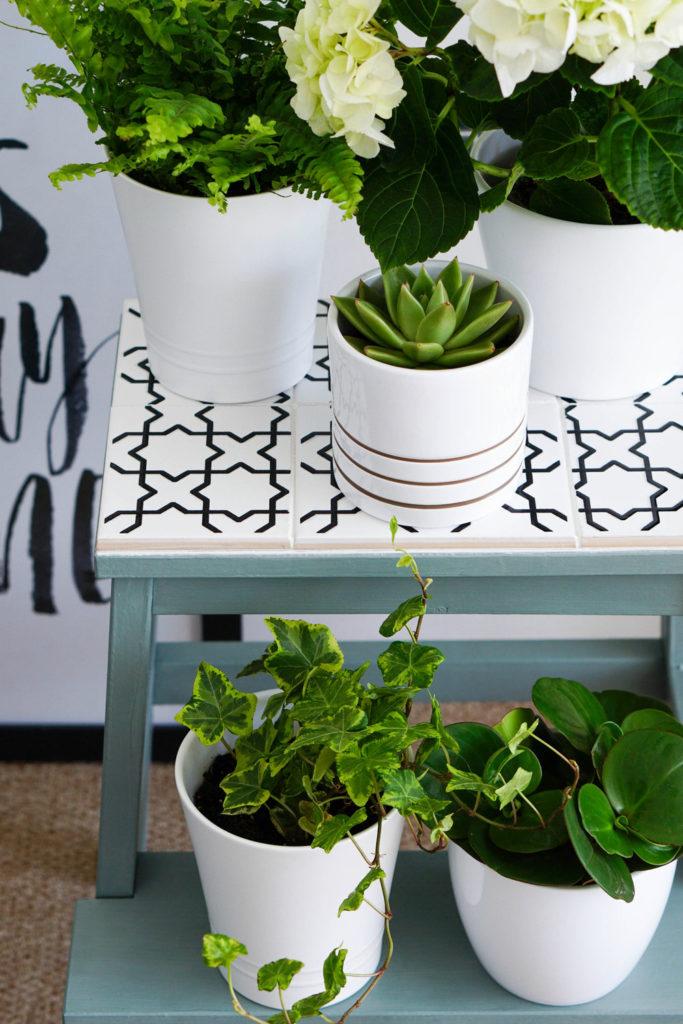 marche pied ikea étagère pour plante carrelage carreaux céramique noir blanc - blog déco - clem around the corner