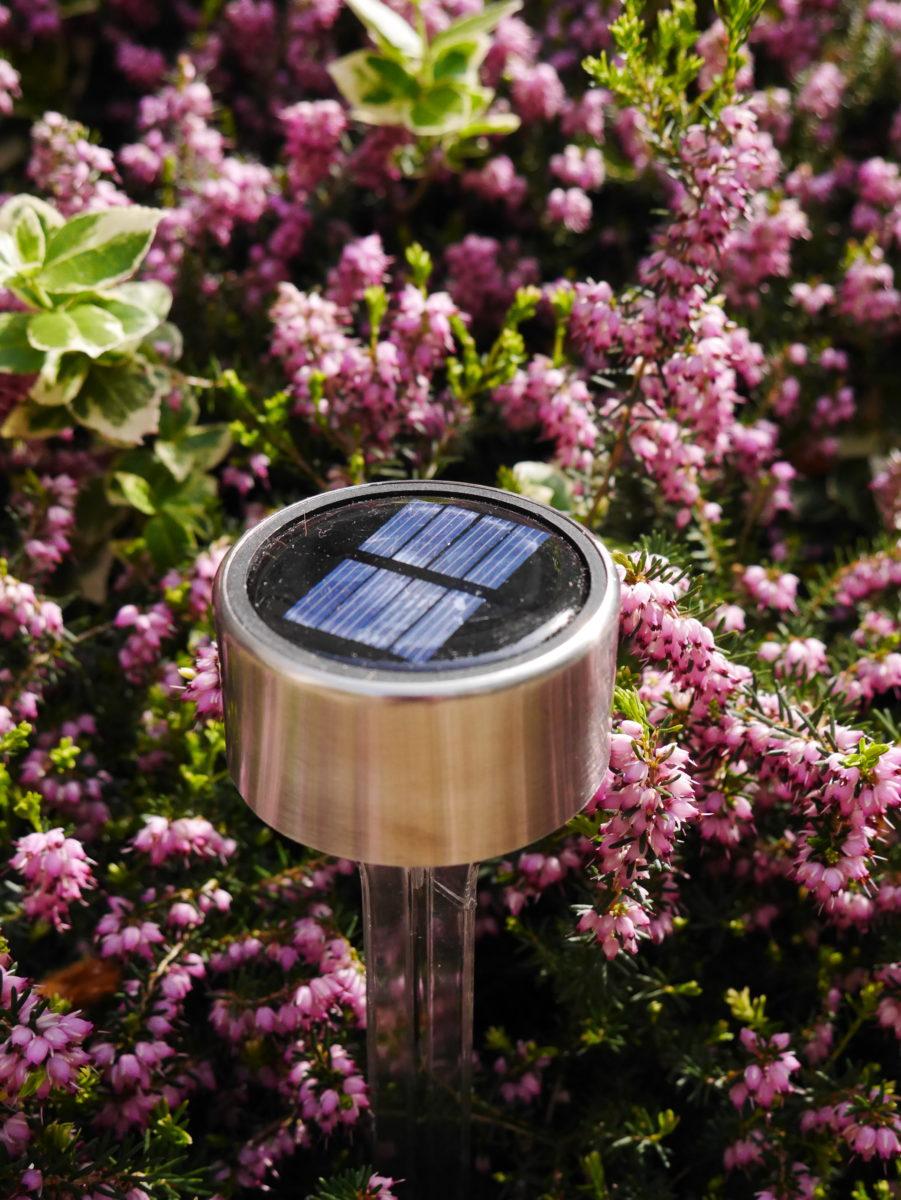 lampes solaires Nortene extérieur pour terrasse ou jardin fleurs roses - blog déco - clemaroundthecorner