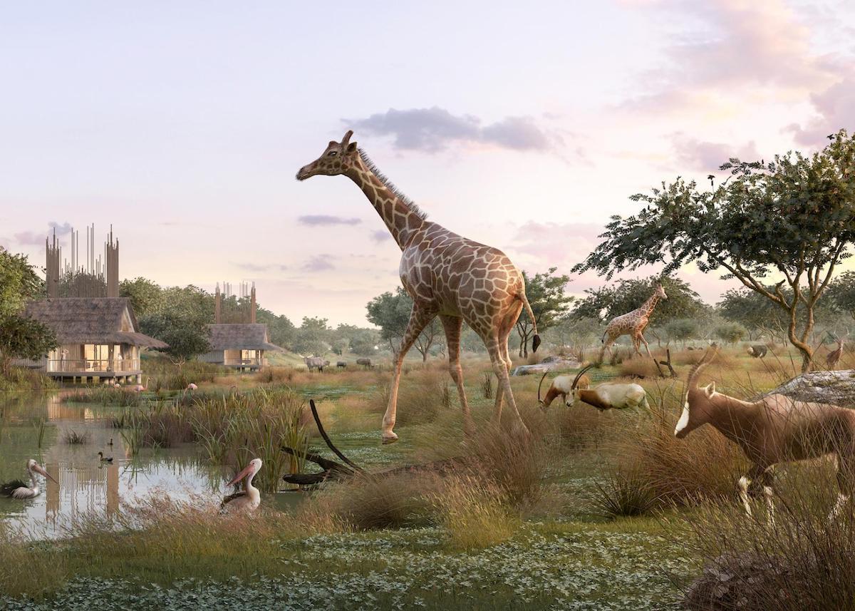 planète sauvage girafe pélican blanc safari lodge sur pilotis - blog déco - clemaroundthecorner