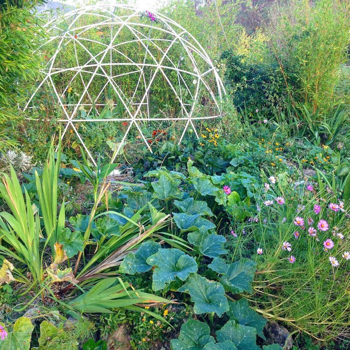 jardin potager serre bulle de jardin résistante tendance couverture transparente déco tendance - clemaroundthecorner
