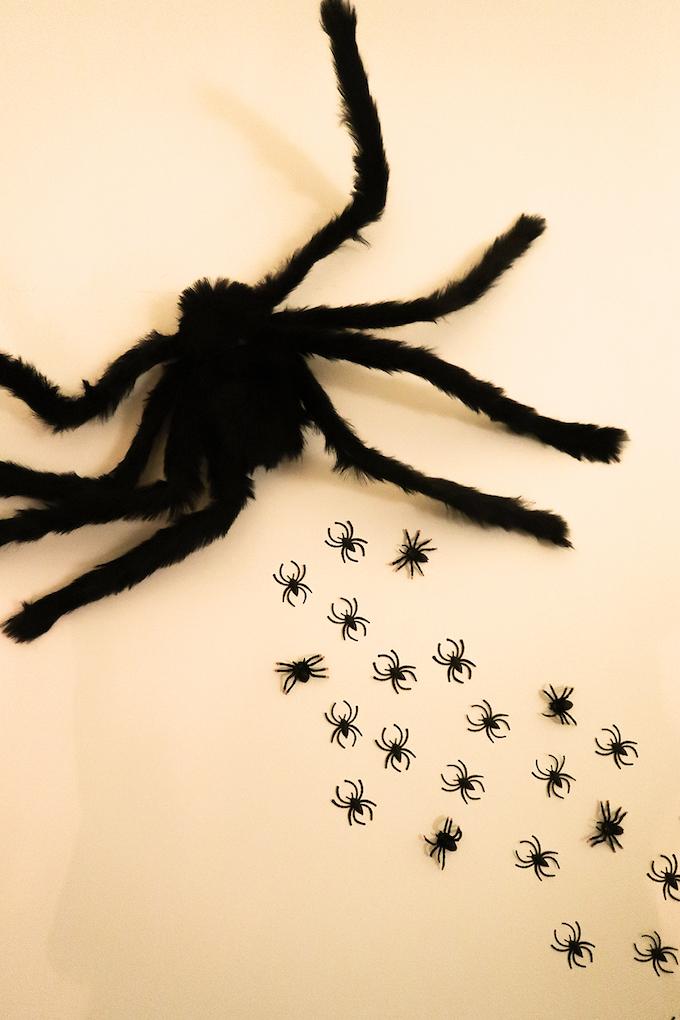 suivez les araignées hagrid halloween idée - blog déco - clem around the corner