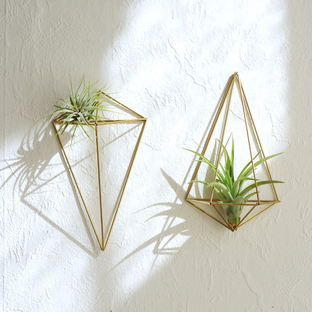 himmeli diy décoration végétale plante verte succulentes - blog déco - clem around the corner