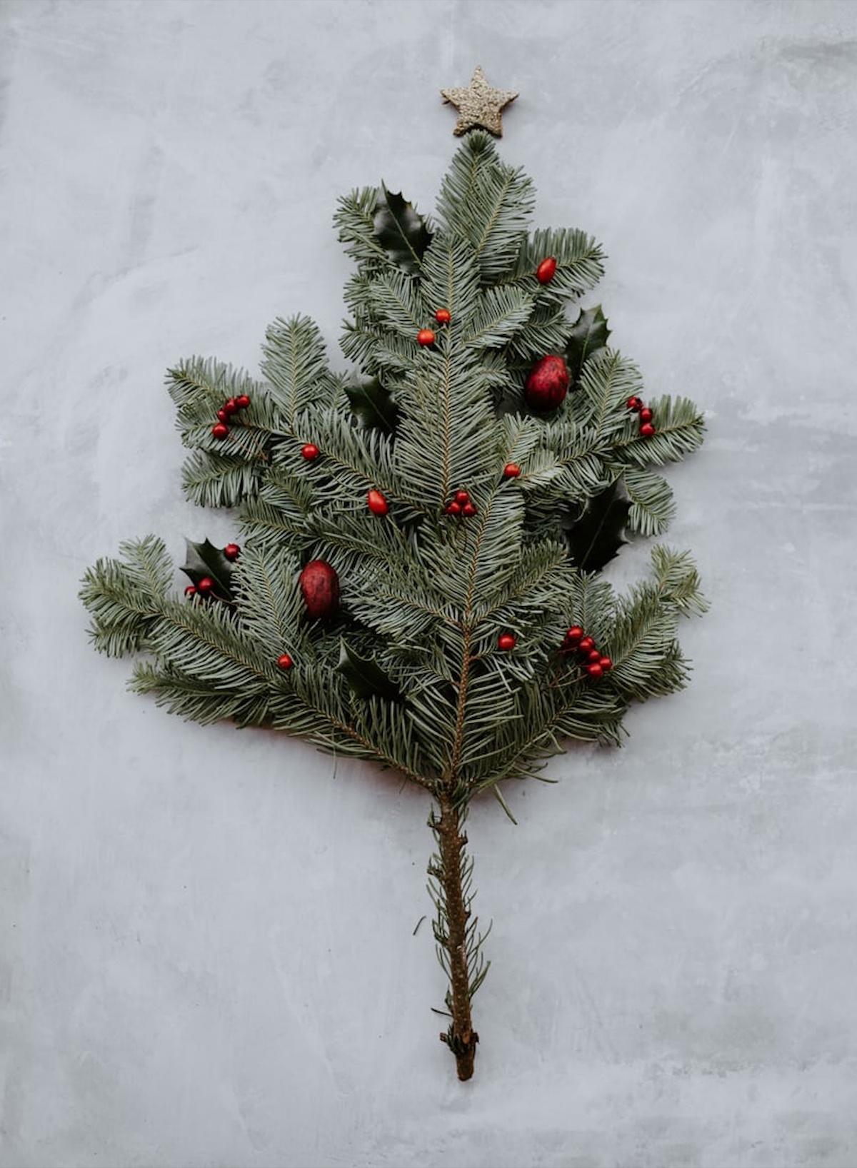 branche d arbre décoration intérieur - blog déco - clematc