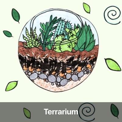 terrarium tutoriel fabriquer soi-meme activité manuelle enfant potager jardinage