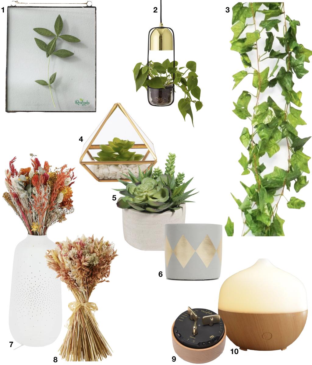 déco végétale plante grimpante vase lumineux plante grasse diffuseur d'huile essentielle