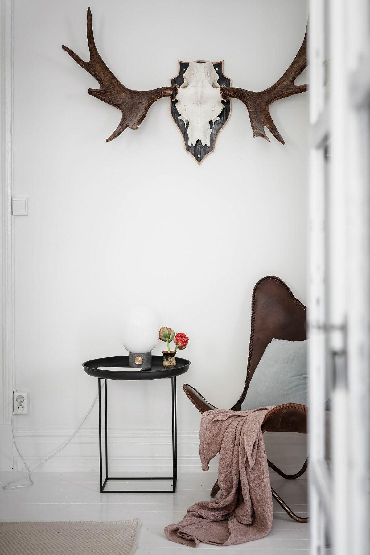 coin cosy salon blanc déco trophée bois cerf fauteuil papillon cuir