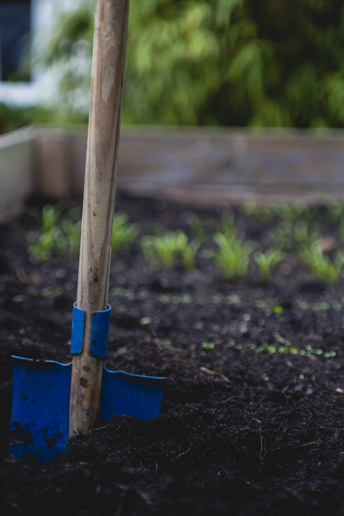 terreau naturel jardin astuce - blog déco- clemaroundthecorner