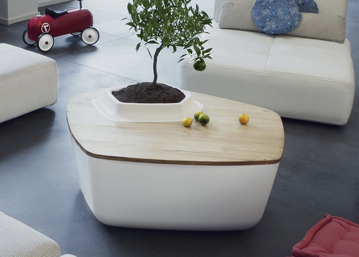 bellila table cahe pot arbuste - blog déco - clem around the corner