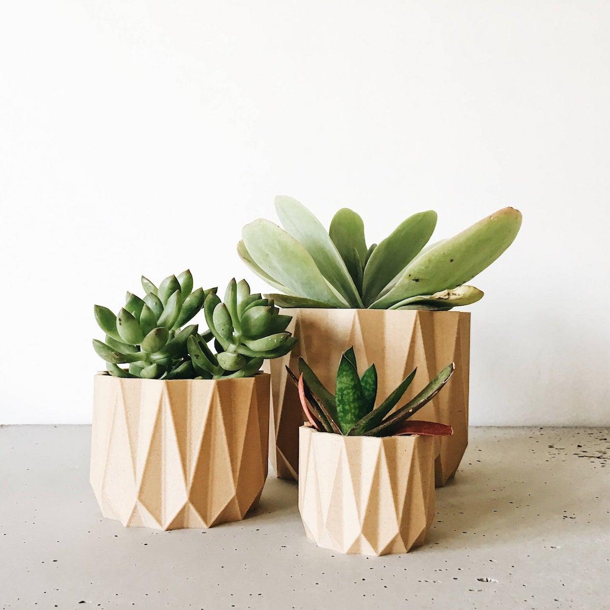 cache pot terracotta plante grasse - blog déco - clematc