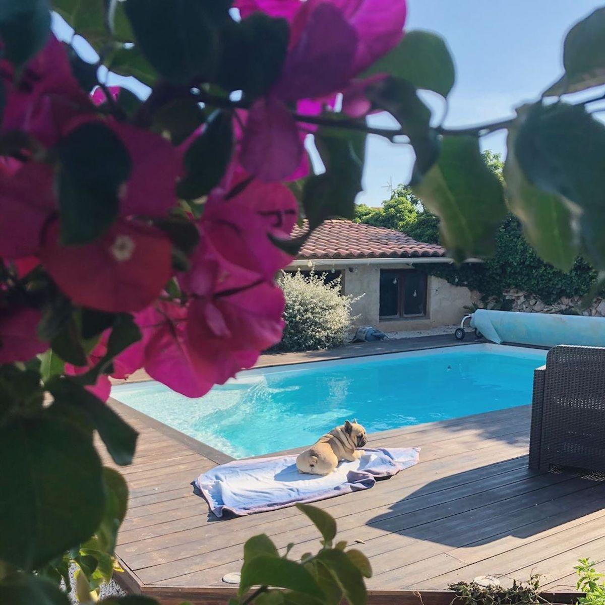 piscine terrasse bois maison provence - blog déco - clematc