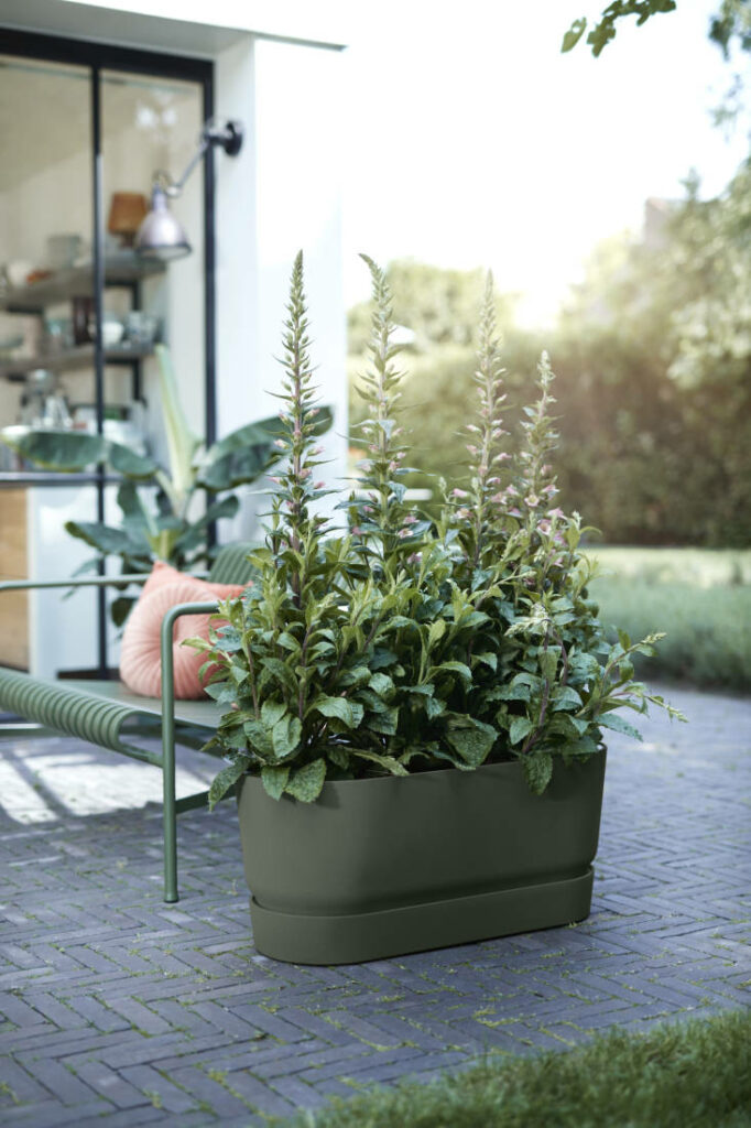 potager en ville jardinière sur roulette pour planter fraisier herbe aromatique - clem around the corner