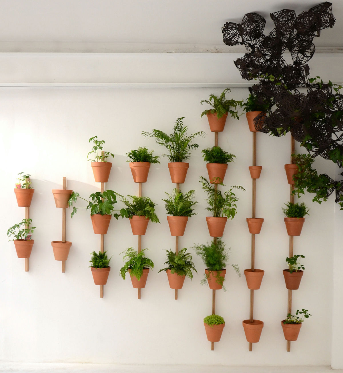 support mural chêne naturel pot planteverte