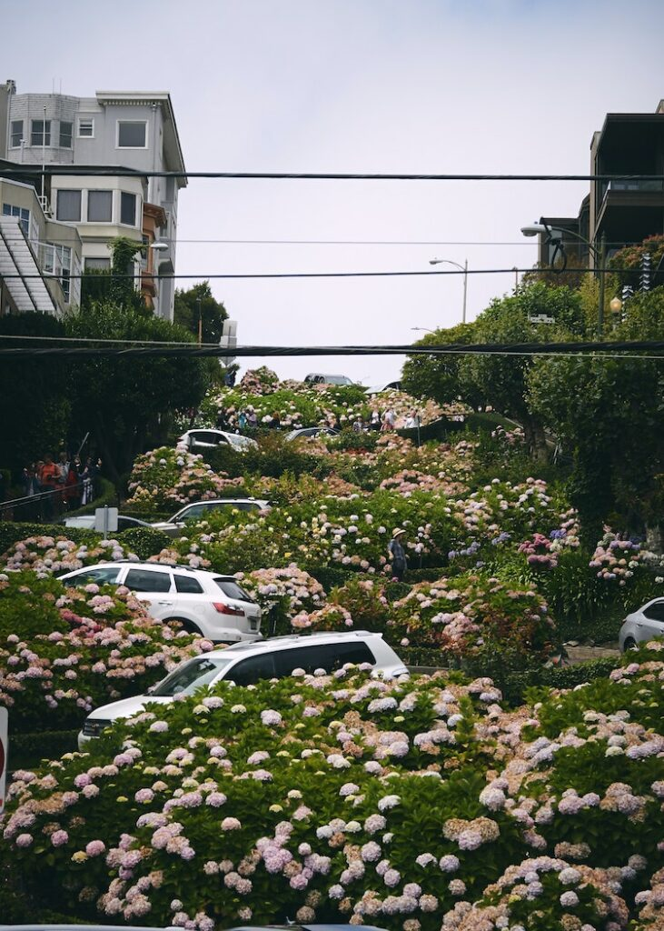 rue zig-zag incroyable San Francisco architecture virage lombard street