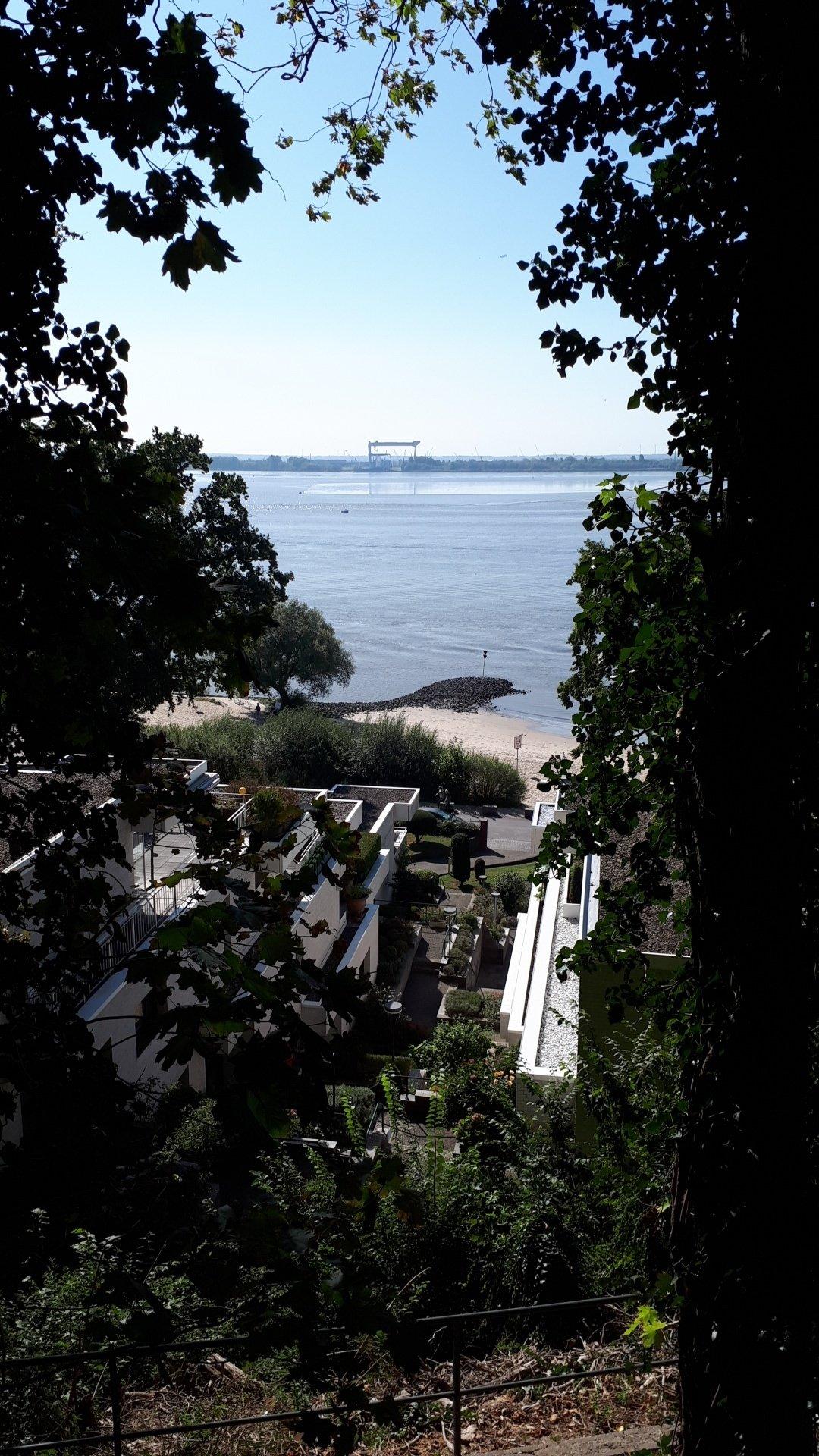 vue sur l'elbe paysage allemand plage calme bâtiments villa quartier chic