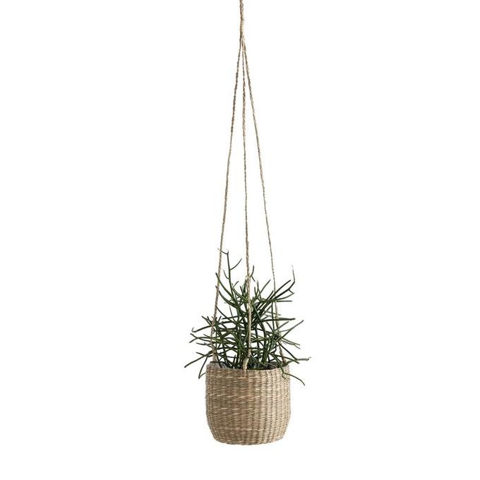 cacher pot herbier à accrocher plafond déco cuisine plante aromatique