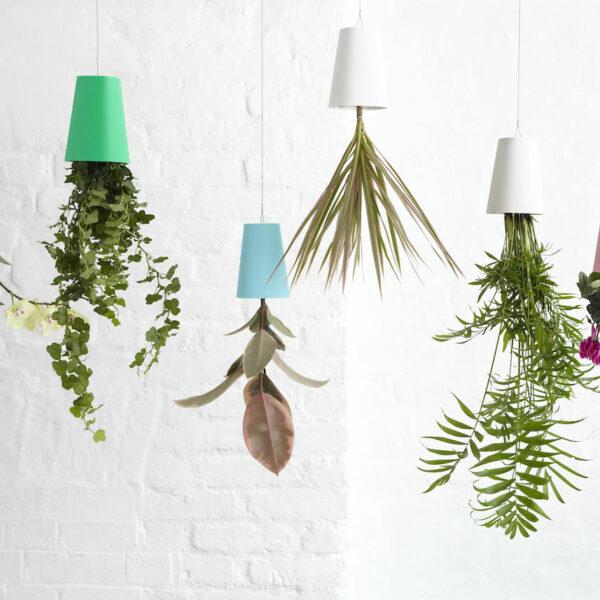 jardinière suspendue salon cache-pot renversé - blog déco - clemaroundthecorner