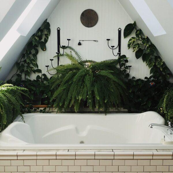 salle de bain thème nature urban jungle combles aménagées