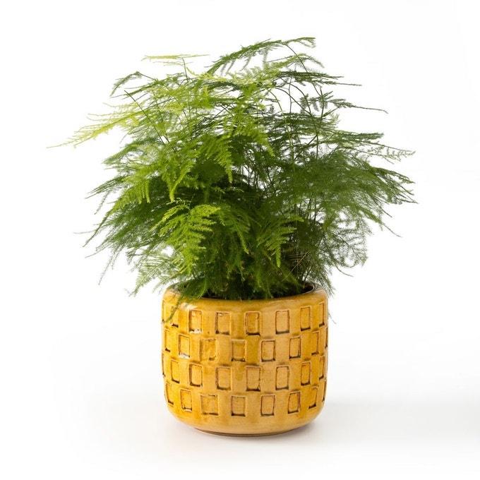 cache-pot déco jaune vif terre cuit relief