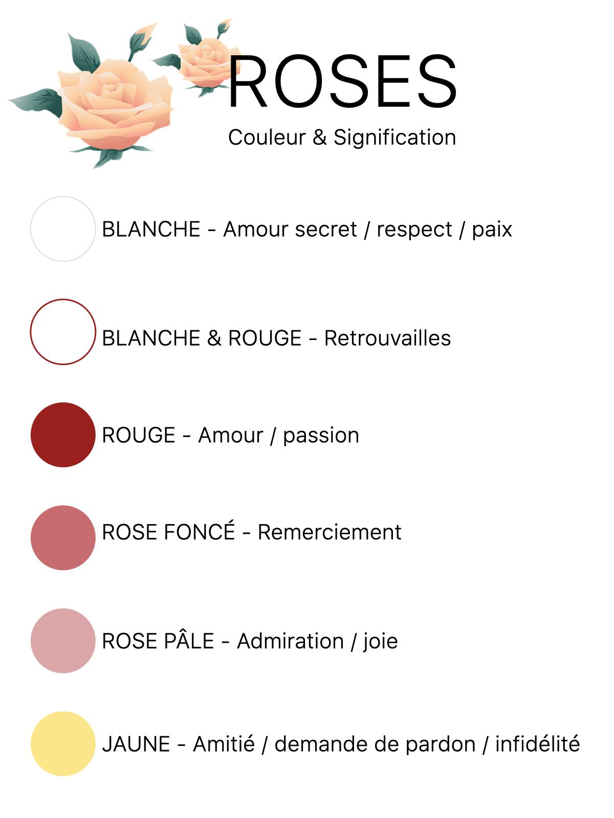 bouquet rose couleur signification jaune rouge blanche bicolore